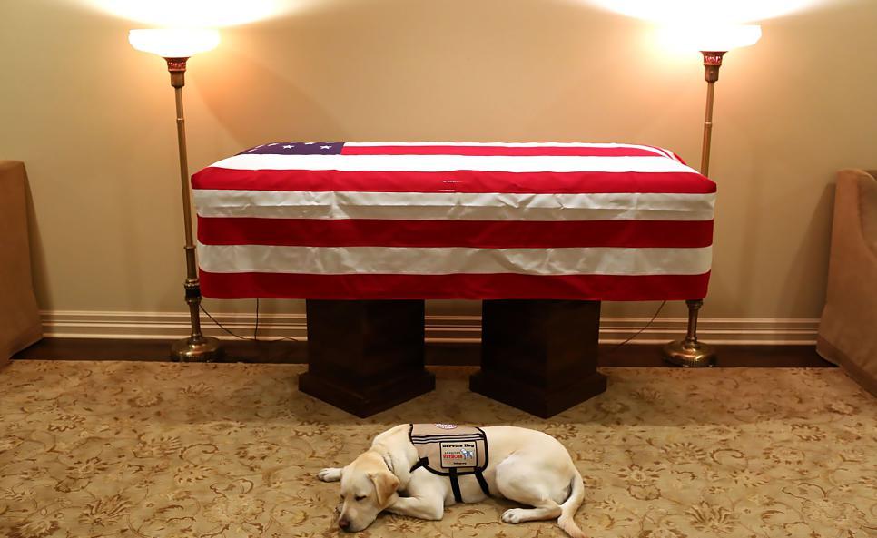 Sully trauert vor dem Sarg seinen verstorbenen Herrchen, der ehemalige US-Präsident George H. W. Bush. | Bild: AFP